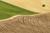 Areal view on Toscanian landscape — Stock Photo