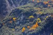 Temporada de outono nas montanhas — Fotografia Stock