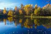 Reflection of fall landscape — Стоковое фото