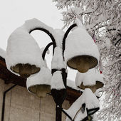Streetlights covered with a thick snow layer — Stock Photo