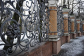 Wrought-iron fencing of the Mikhailovsky garden, St. Petersburg, — Stock Photo