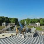 "ST. PETERSBURG, RUSSIA - MAY 26: The Peterhof fountain ""Samson t — Stock Photo #64642121"