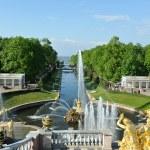 "ST. PETERSBURG, RUSSIA - MAY 26: The Peterhof fountain ""Samson t — Stock Photo #64642131"