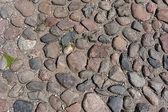 古代の舗装石 — ストック写真