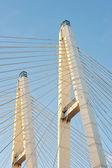 Big Obukhovsky bridge (cable-stayed) over the Neva river, St. Pe — ストック写真