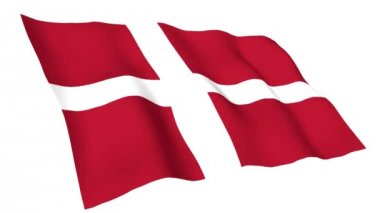 Animated flag of Denmark — Stock Video