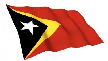 Animated flag of East Timor — Stock Video