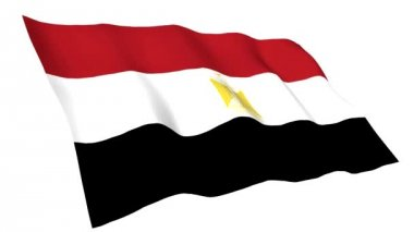 Animated flag of Egypt — Stock Video