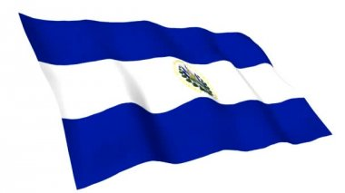 Animated flag of El Salvador — Stock Video