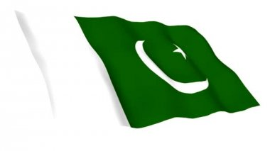 Animated flag of Pakistan — Stock Video