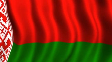 Flag of Belarus — Stock Video