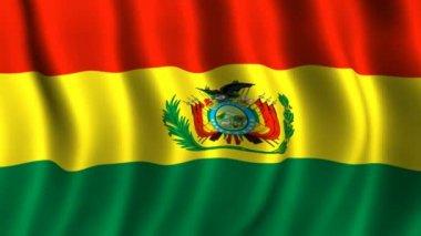 Flag of Bolivia — Stock Video