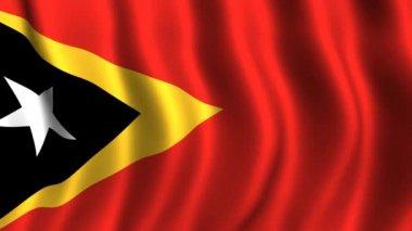 Flag of East Timor — Stock Video