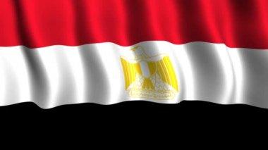 Flag of Egypt — Stock Video