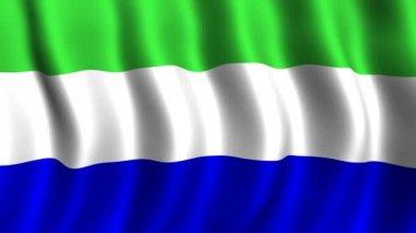 Flag of Galapagos — Stock Video