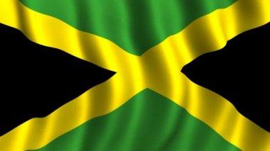 Flag of Jamaica — Stock Video