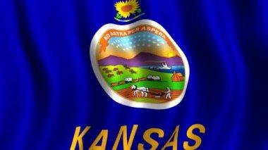 Flag of Kansas — Stock Video