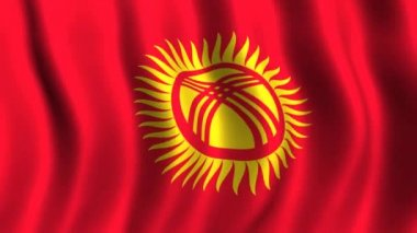 Flag of Kyrgyzstan — Stock Video