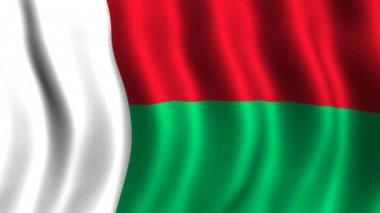 Flag of Madagascar — Stock Video