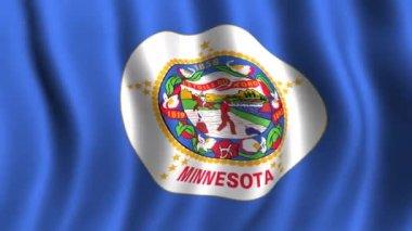 Flag of Minnesota — Stock Video