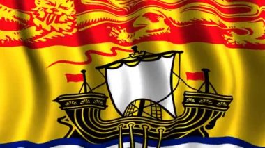Flag of New Brunswick — Stock Video