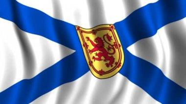 Flag of Nova Scotia — Stock Video