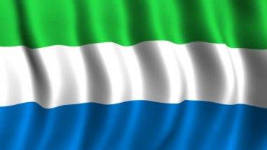 Flagge von sierra leone — Stockvideo