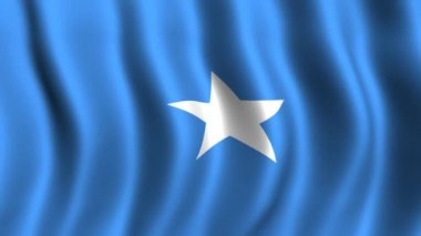 Flag of Somalia — Stock Video