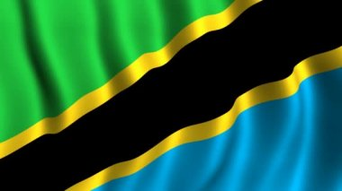 Flag of Tanzania — Stock Video