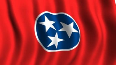 Flag of Tennessee — Stock Video