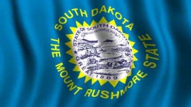 Flag of South Dakota — Stock Video