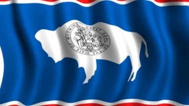Flag of Wyoming — Stock Video
