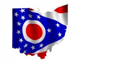 Flag of Ohio — Stock Video