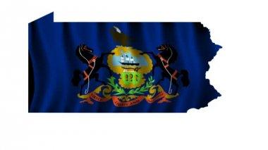 Flag of Pennsylvania — Stock Video