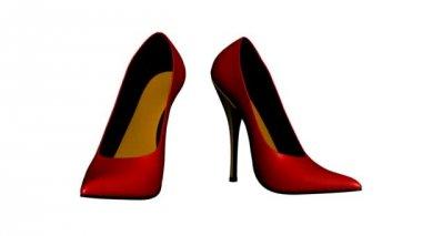 Ladies Shoes — Stock Video