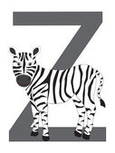 Z-zebra — Stock Vector
