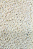 Wood Texture or Background — Stock Photo