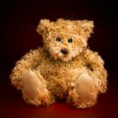 Portrait of a Fluffy Teddy Bear — Stock Photo