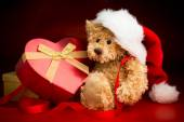 Teddy Bear Wearing a Christmas Hat and Hugging a Box — Stock Photo