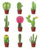 Cactuses icons — Stock Vector
