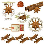 Anise and cinnamon — Stock Vector