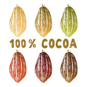 Hand drawn cocoa beans set — Stock Vector