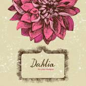 Background with hand drawn dahlia — Stock Vector