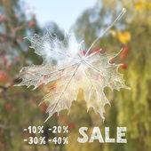 Autumn sale — Stock Vector