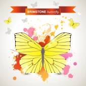 Brimstone butterfly — Stock Vector