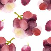 Watercolor grapes seamless — Stock Vector