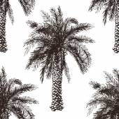 Hand drawn palm tree seamless — Stok Vektör