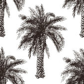 Hand drawn palm tree seamless — Wektor stockowy