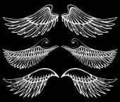 Hand getrokken vleugels — Stockvector