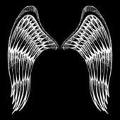 Hand gezeichneten Flügel — Stockvektor